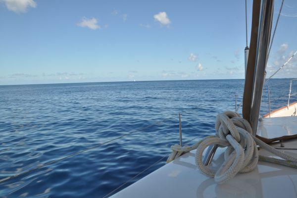 54. En lugn dag på havet